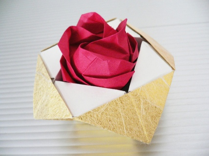rose in a box
