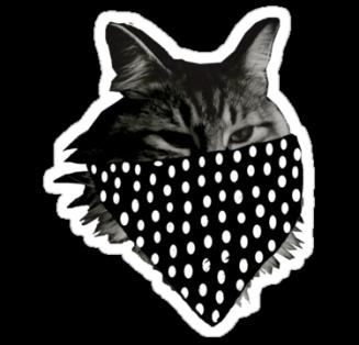 pussycat bandit
