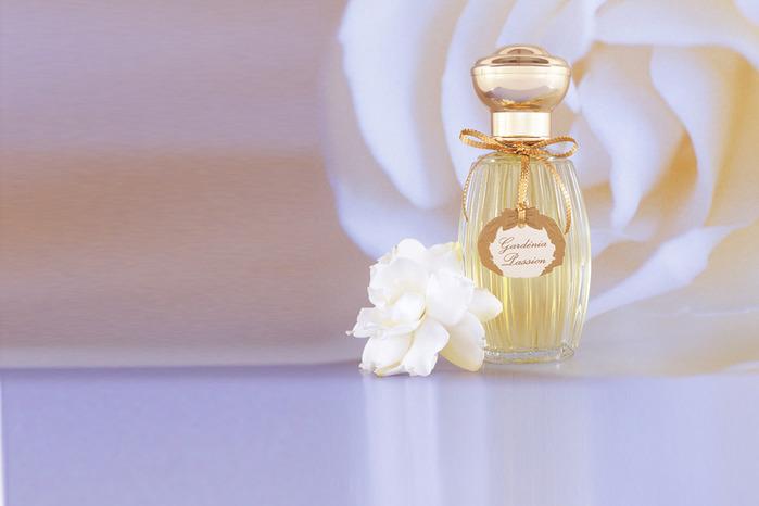 Gardenia Passion