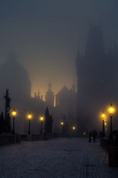 beautiful haze