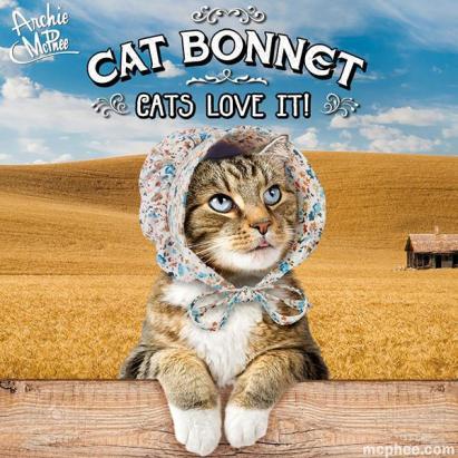 cat-bonnet-tabby_grande