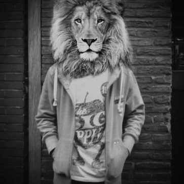 Chill Lion